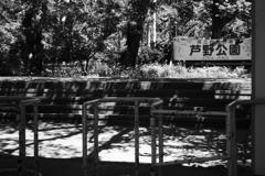 木漏れ日の改札口