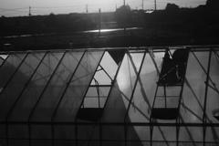 宇都宮線の車窓~ビニールハウス