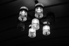 上野駅 新幹線乗り場の照明