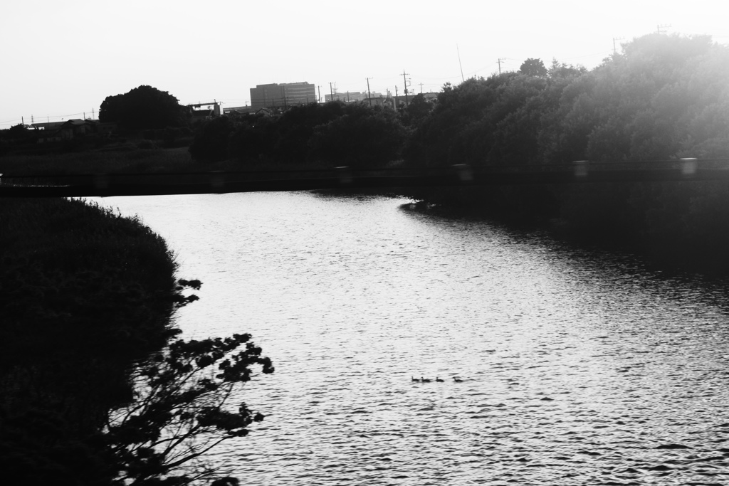 宇都宮線車窓~夕刻の川