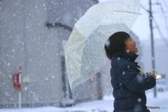 雪きれいだなぁ