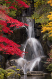 紅葉と滝#2