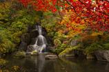 紅葉と滝 #3