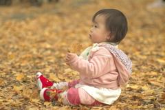 初めての秋