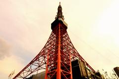 夕映えの東京タワー #2
