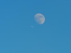 月は見守ってくれている