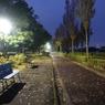 朝の公園、初冬
