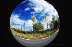 Through the fish-eye lens