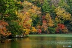 カラフルな湖畔