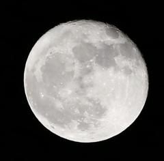 月のクレーターが撮りたいっ!!
