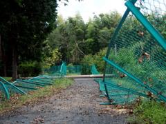 台風や フェンス・電柱 なぎ倒す
