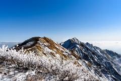 鳥取大山の頂