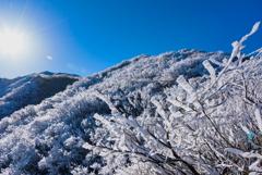 鳥取大山の樹氷