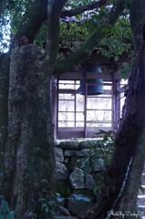 木々の中の梵鐘