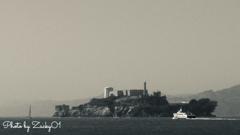 """""""La Isla de los Alcatraces"""""""