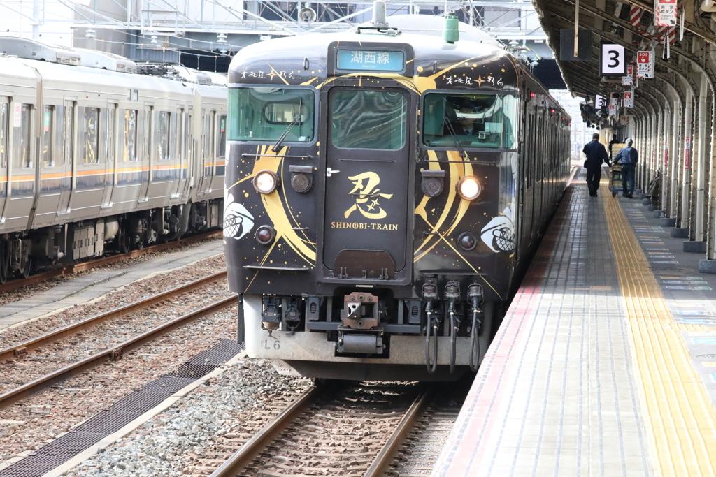 113系(シノビトレイン)