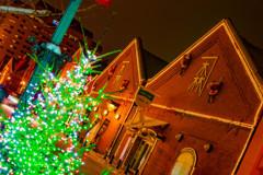 クリスマスツリーと赤レンガ