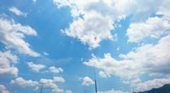 空を仰ぐ 5月