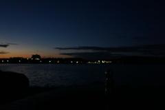 佐鳴湖散歩10