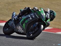 Kawasaki Team GREEN #15