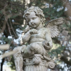 天使と小鳥