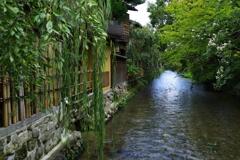 祇園④ 白川