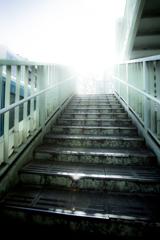 東京さんぽ 渋谷階段
