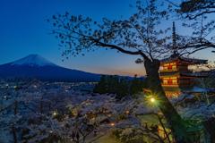 トワイライト富士&塔&桜1