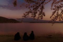 河口湖マジックアワー富士山桜と親子