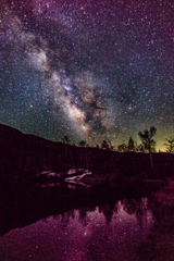 Milky Way of the pond Part3