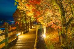 山中湖「夕焼けの渚・紅葉まつり」ライトアップ5