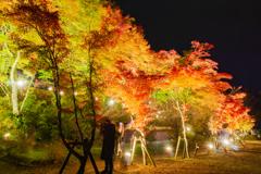 山中湖「夕焼けの渚・紅葉まつり」ライトアップ3