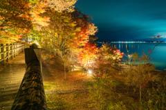 山中湖「夕焼けの渚・紅葉まつり」ライトアップ4