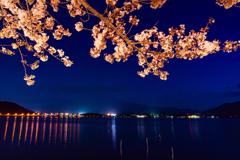 夜景河口湖の水面映り込みと桜