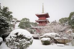 雪の豊前国分寺三重塔