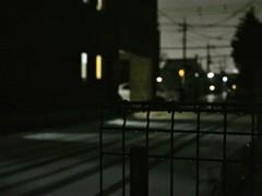 雪がシンシンと。