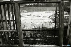 シリーズ 嫁の激写 「 廃墟の木の枠 」