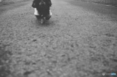 走りくる犬