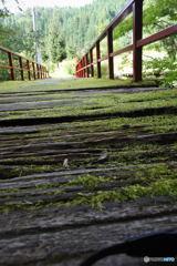 ヨメフォト 「七面山にかかる橋」