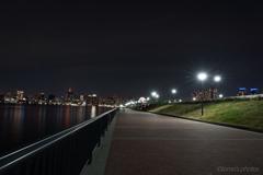 豊洲ぐるり公園の夜_2