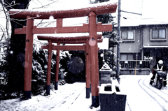 赤城神社03