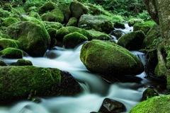 奥大山の天然水ロケ地