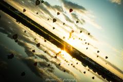 balloon festival!!!!!