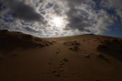砂丘をのぼる