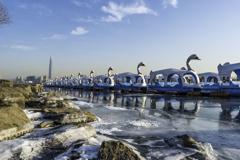 凍り付いたアヒルボート