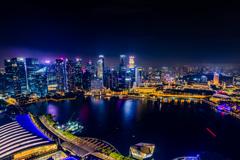 シンガポールの夜景 マリーナベイサンズより