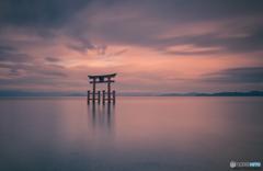 The floating torii at Shirahige Shrine.