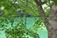 伊奈ヶ湖エメラルドグリーン