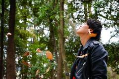 木の葉と 悪戯風