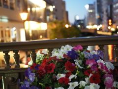 堀川のフラワーフェスティバル・夜景